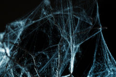 Abstract Spiderweb on black Royalty Free Stock Photos