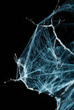 Abstract Spiderweb on black Stock Photography