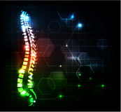 Abstract spine Royalty Free Stock Images