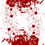 Abstract splatter design. splatter red color on isolate background Royalty Free Stock Photos
