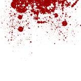 Abstract splatter red color background.  splatter design. Royalty Free Stock Images