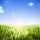 Abstract Spring background stock illustration