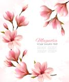 Abstract spring background with beautiful magnolia royalty free illustration