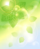 Abstract spring background with leaves bubbles and Stock Image