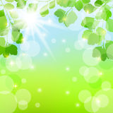 Abstract spring background with leaves. EPS10. Vector illustration stock illustration