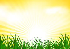 Abstract spring background royalty free illustration