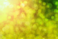 Abstract spring background with sunlight Stock Photography
