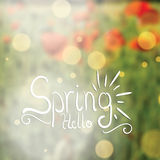 Abstract spring floral background Royalty Free Stock Images