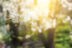 Abstract spring floral background Stock Image