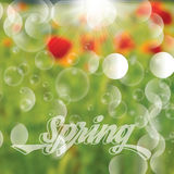 Abstract spring floral background Royalty Free Stock Photography