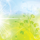 Abstract spring floral background Stock Images