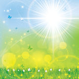 Abstract spring floral bright sunny background Stock Photography