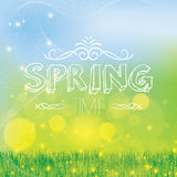 Abstract spring green background Stock Images