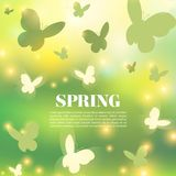 Abstract Spring Greeting Card or Poster Design. Beautiful Blurred Lights with Butterflies Spring background. Bokeh vector design Royalty Free Stock Image