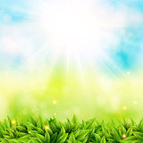 Abstract spring poster with shining sun and blurred background. Stock Photos