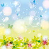 Abstract spring summer background. With bubble Royalty Free Stock Photography