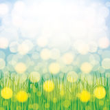 Abstract spring summer background stock photography