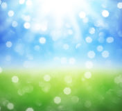 Spring and summer background Stock Photos
