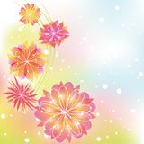 Abstract springtime colorful flower Stock Image