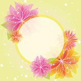 Abstract springtime flower greeting card Royalty Free Stock Photography