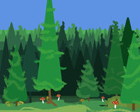 Abstract spruce forest landscape Stock Images