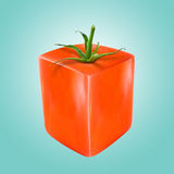 Abstract square red tomato Royalty Free Stock Image