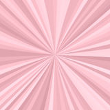 Abstract starburst background from radial stripes. In pink tones Royalty Free Stock Photo