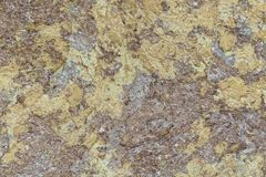 Abstract stone abstract texture Stock Photos