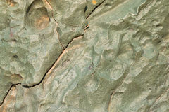 Abstract stone background texture photo of rock in green with fr Royalty Free Stock Photography