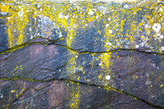Abstract stone background Stock Images