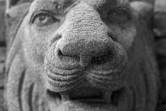 Abstract stone lion's head statue Royalty Free Stock Photos