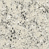 Abstract stone seamless texture Royalty Free Stock Photos