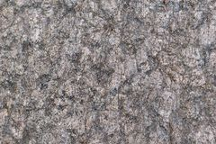 Abstract stone texture of gray color Stock Images