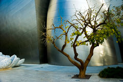Abstract Study. Abstract photos of building wings with a tree Stock Images
