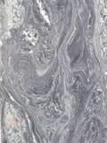 Abstract stuifmeel Royalty-vrije Stock Afbeeldingen