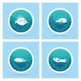 Abstract Styling Fish Label Isolated On Background Stock Photography