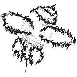 Abstract stylized B&W fly or bee Stock Photos
