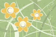 Abstract stylized daisy flowers background. Vector image Stock Image