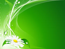 Abstract summer background. Abstract green summer backdrop with chamomile stock illustration