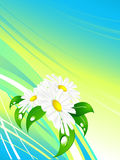 Abstract summer background. With plants and lines vector illustration
