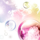Abstract summer background Stock Photos