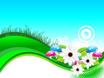 Abstract summer background with flower Royalty Free Stock Images