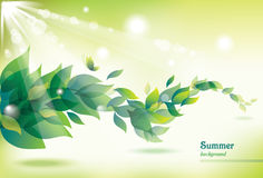 Abstract summer background with green leaves. Image for your design royalty free illustration