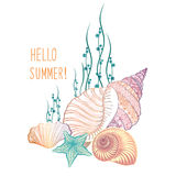 Abstract summer background. Summer holidays cover with seashell and sea star Stock Photos