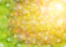 Abstract summer background with sunlight Stock Photos