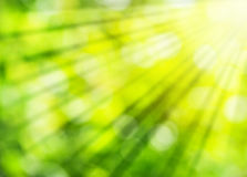 Abstract summer background with sunlight Royalty Free Stock Photography