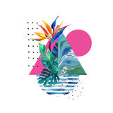 Abstract summer geometric elements with exotic flower and leaves Royalty Free Stock Images