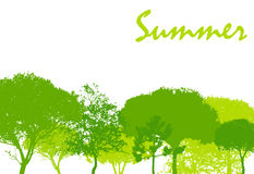 Abstract Summer Natural Background Vector Royalty Free Stock Images