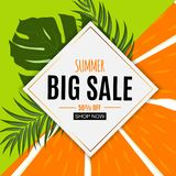 Abstract Summer Sale Background with Fresh Fruits. Vector Illustration. EPS10 royalty free illustration