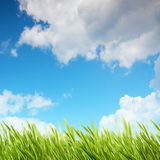 Abstract summer and spring backgrounds. For your design Royalty Free Stock Photography